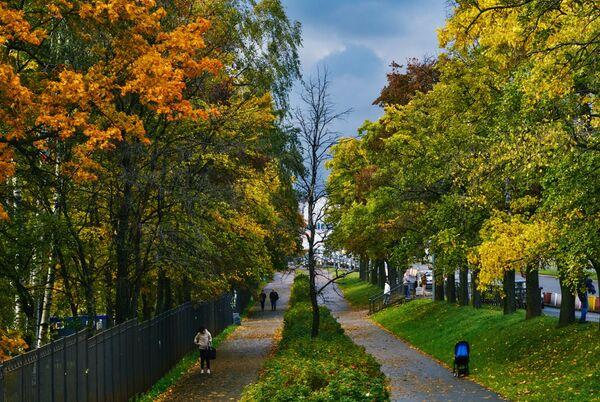 Золотая осень в Санкт-Петербурге - Sputnik Латвия