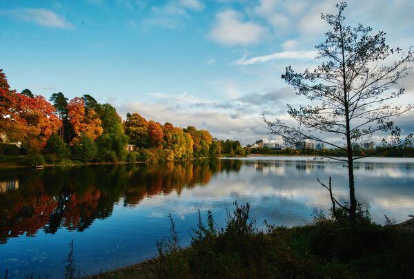 Суздальские озера в Санкт-Петербурге - Sputnik Латвия