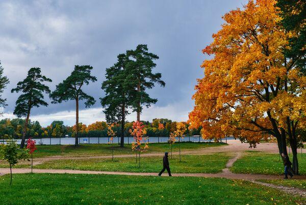 Прохожий гуляет в парке около Суздальских озер в Санкт-Петербурге - Sputnik Латвия