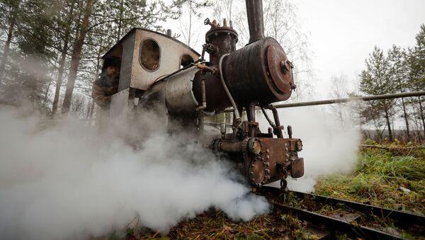 Самодельный паровоз, созданный энтузиастом Павлом Чилиным, проезжает по самодельной железной дороге в поселке Ульяновка Ленинградской области - Sputnik Латвия