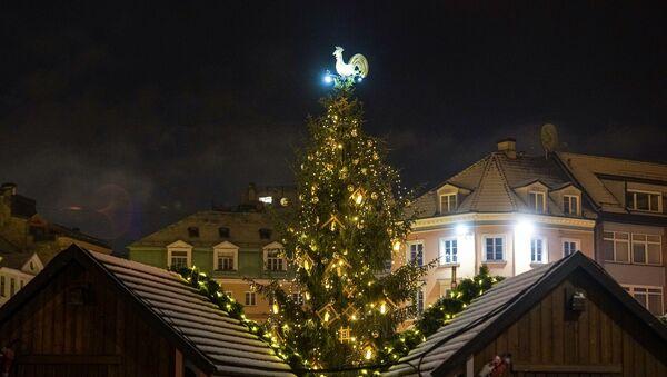 Рождественская елка на Домской площади в Риге - Sputnik Латвия
