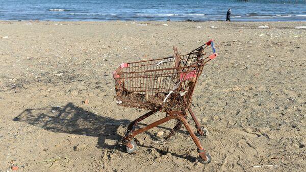 Ржавая тележка для покупок на пляже - Sputnik Латвия