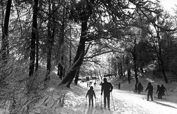 Лыжная прогулка в Измайловском парке - Sputnik Латвия