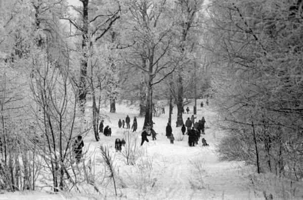 Жители московского микрорайона Ясенево на прогулке в зимнем парке - Sputnik Латвия