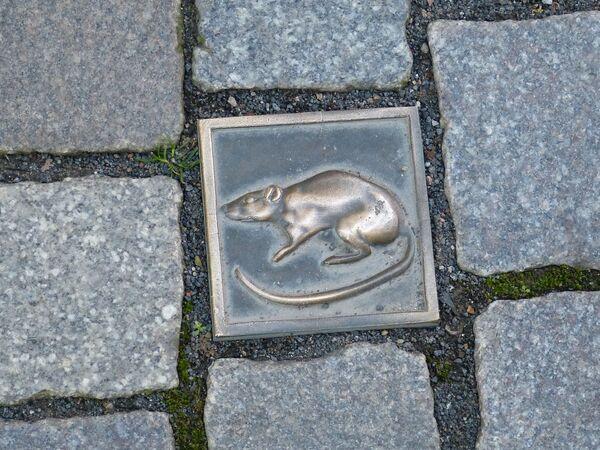 Изображение крысы в честь легенды о крысолове из Гамельна - Sputnik Латвия