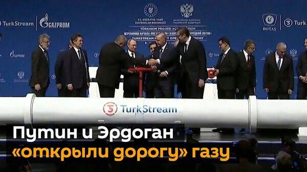 Путин и Эрдоган запустили Турецкий поток - Sputnik Латвия