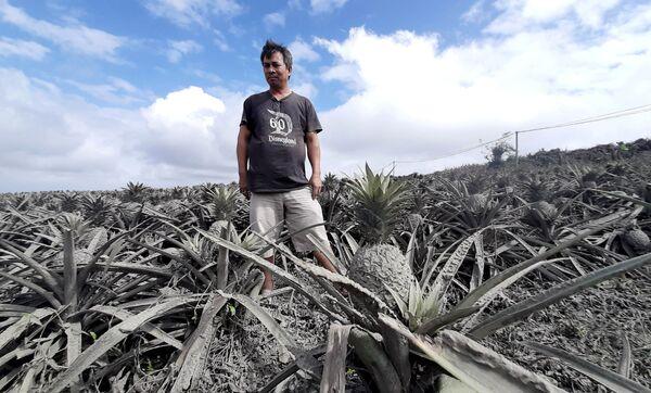Последствия извержения вулкана на Филиппинах - Sputnik Латвия