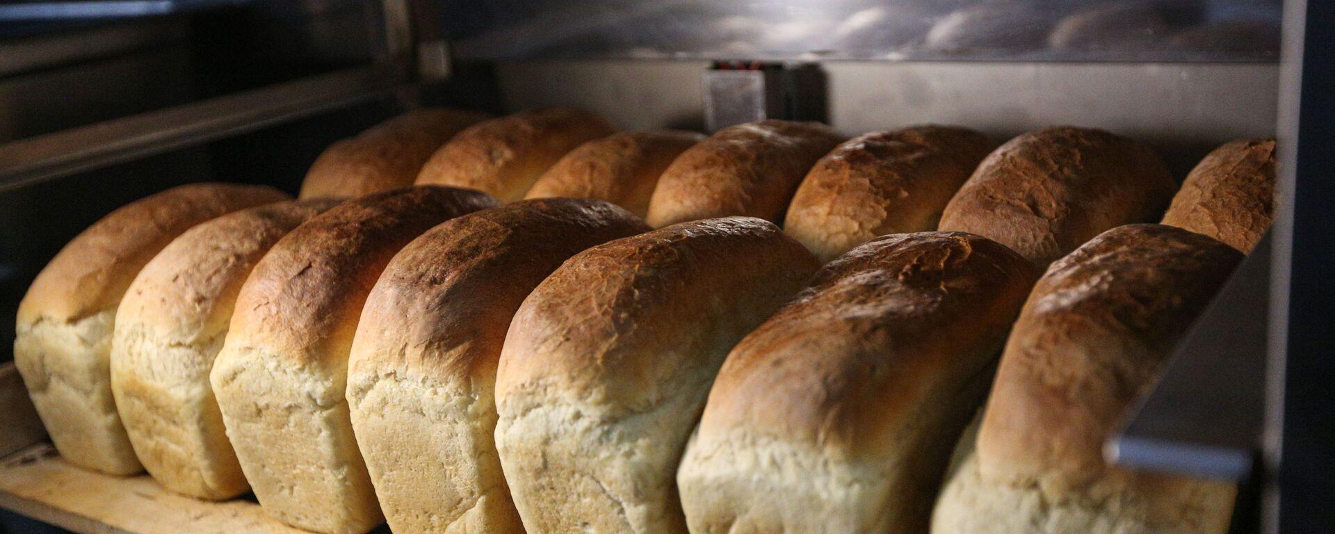 Хлеб, испеченный на Арктической военной полевой кухня - Sputnik Латвия, 1920, 12.03.2021