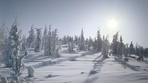 Зима в селе Оймякон  - Sputnik Латвия