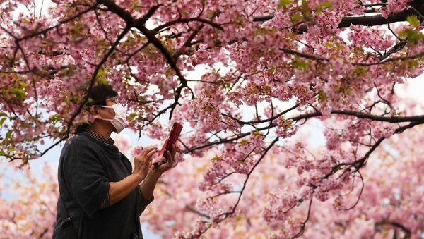 Sieviete fotografē ziedošu ķiršu koku Japānā - Sputnik Latvija