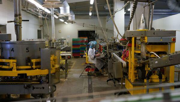 Работа в консервном цеху - Sputnik Latvija