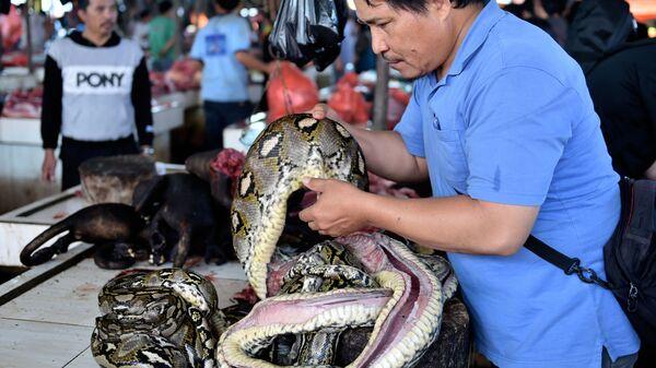 Торговец змеиным мясом на рынке - Sputnik Latvija