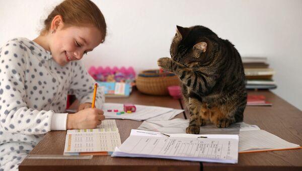 Ученица Кети Сингер из Югенхайма во время домашнего обучения в связи с пандемией коронавируса  - Sputnik Латвия