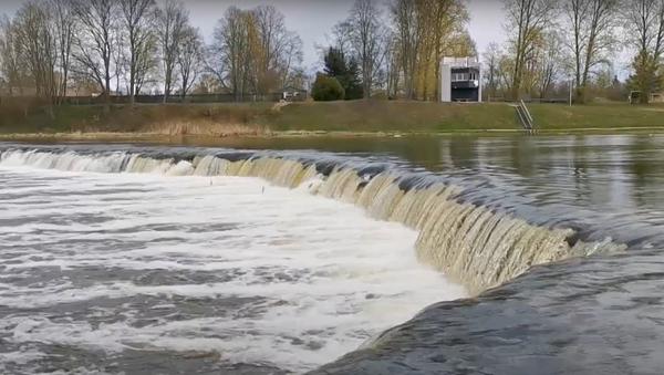 Летающая рыба по-латвийски: как вимба штурмует водопад - Sputnik Латвия