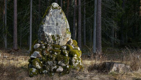 Уникальная находка в лесу под Валкой - памятный камень, рассказывающий о визите в Лифляндию дяди последнего русского царя - Sputnik Латвия