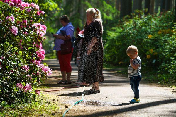 LU Rododendru selekcijas un izmēģinājumu audzētava Babīte  - Sputnik Latvija