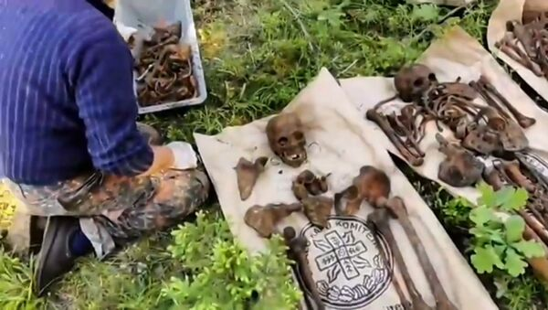 Поисковики нашли в Латвии братскую могилу советских солдат - Sputnik Латвия