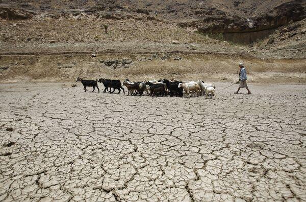 Пастух ведет стадо коз через плотину, пострадавшую от засухи, на окраине города Сана, Йемен - Sputnik Латвия