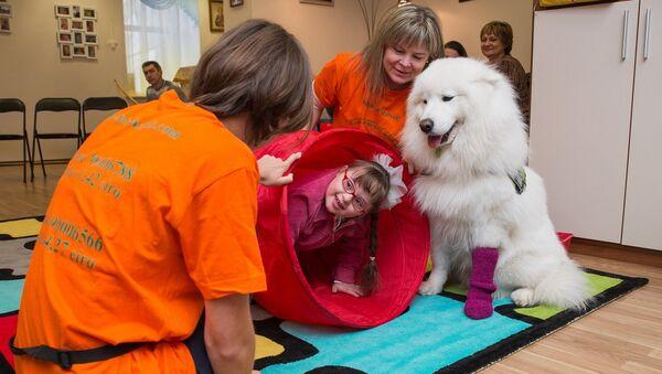 После прессконференции фонд продемонстрировал несколько занятий с больными детьми. Ученая собака самоед помогает девочке с синдромом дауна в игровой форме осваивать двигательно-моторные функции - Sputnik Latvija