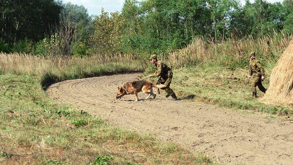 Пограничный наряд на контрольно-следовой полосе. Архивное фото - Sputnik Латвия