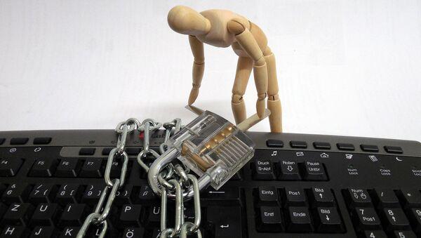Hakeris. Foto no arhīva - Sputnik Latvija