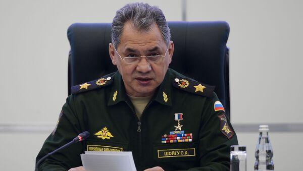 Министр обороны России Сергей Шойгу - Sputnik Латвия