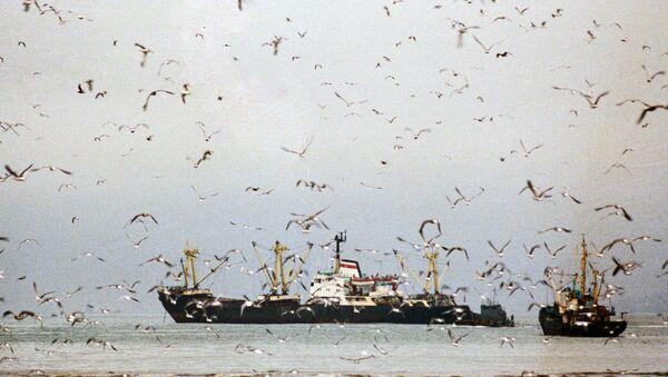 Рыболовецкие судна в море - Sputnik Латвия