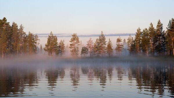 Лесное озеро в российской республике Карелия. - Sputnik Латвия