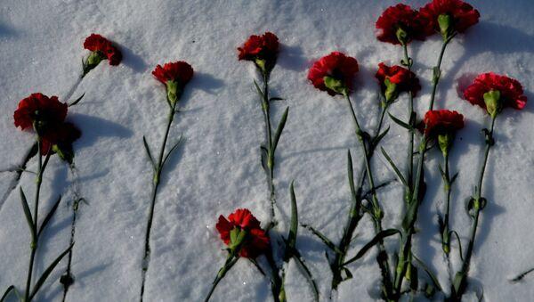 Гвоздики на снегу - Sputnik Латвия