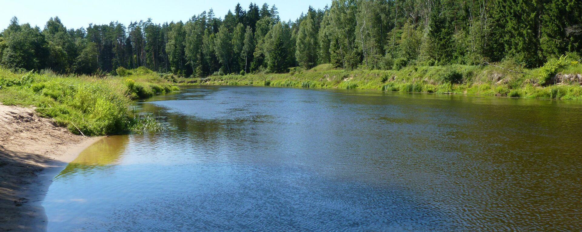 Река Гауя - Sputnik Латвия, 1920, 05.07.2021