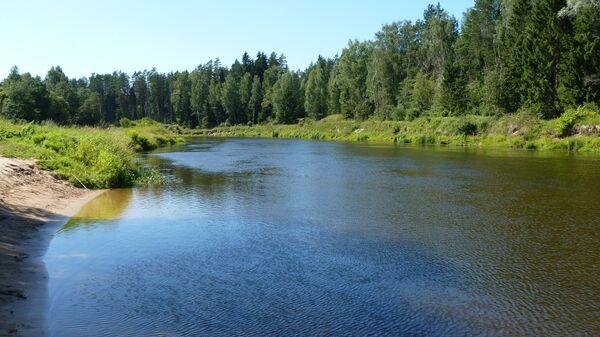 Река Гауя - Sputnik Латвия