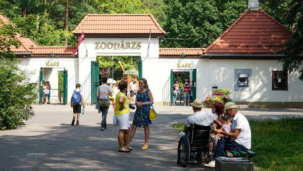 Рижский зоопарк - Sputnik Латвия