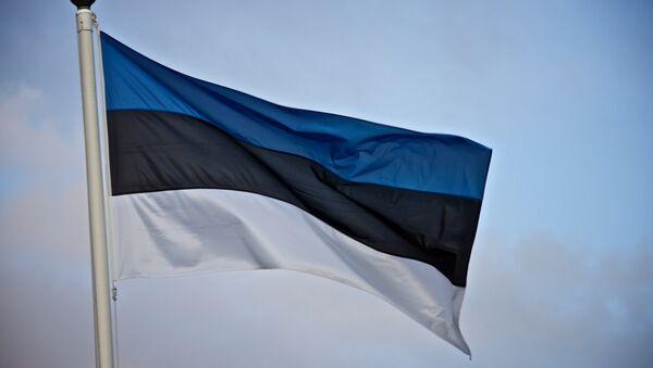Эстонский флаг. Иллюстративное фото. - Sputnik Латвия