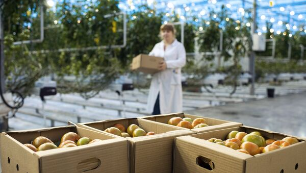Latvijā ir palielinājusies teritorija organiski tīras produkcijas ražošanai - Sputnik Latvija