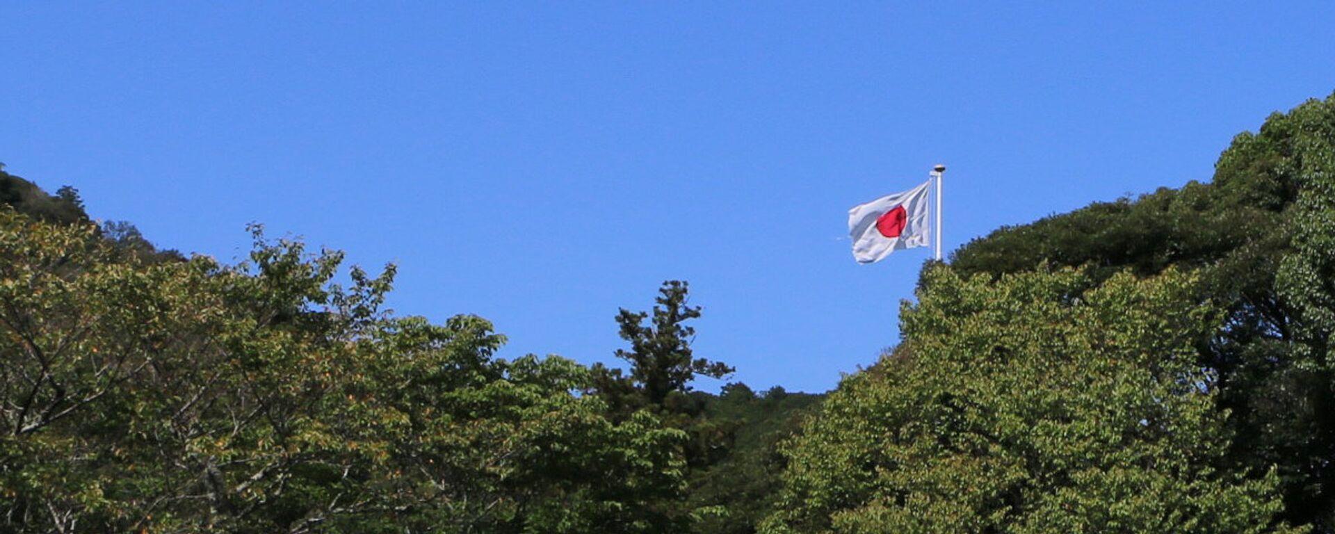 Государственный флаг Японии - Sputnik Latvija, 1920, 17.10.2020