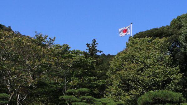 Государственный флаг Японии - Sputnik Latvija