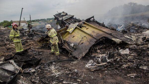Крушение малайзийского Boeing на Украине - Sputnik Latvija