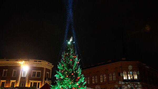 Елка на Домской площади - Sputnik Латвия