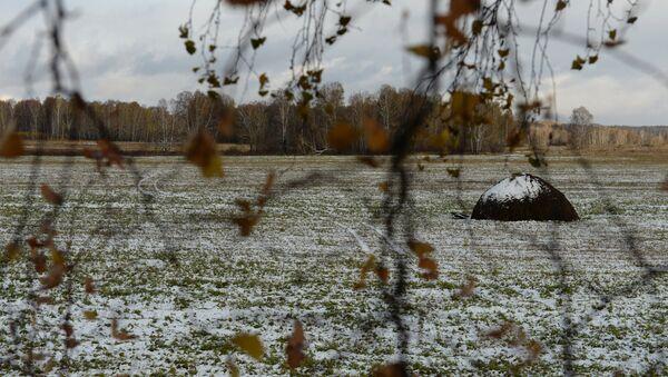 Мокрый снег. - Sputnik Латвия