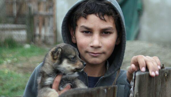 Мальчик из цыганской семьи - Sputnik Латвия
