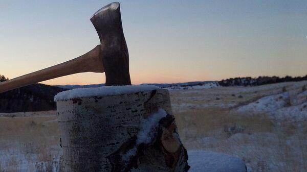Вырубка деревьев - Sputnik Latvija