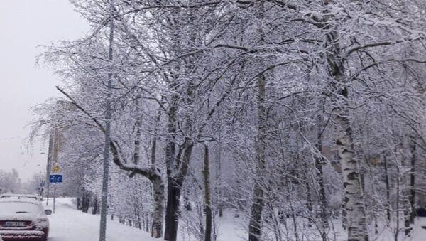 Снег в Риге - Sputnik Latvija