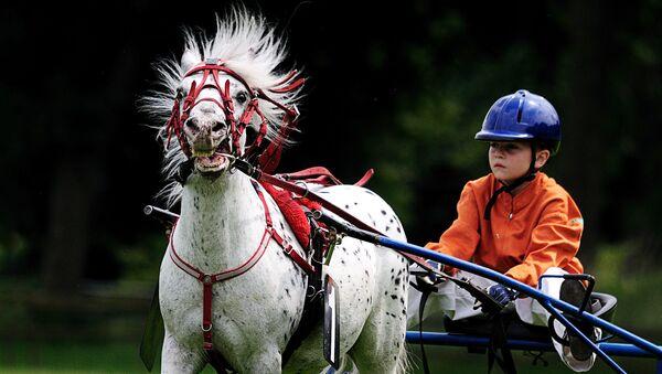 Скачки конный клуб дети. Архивное фото - Sputnik Латвия