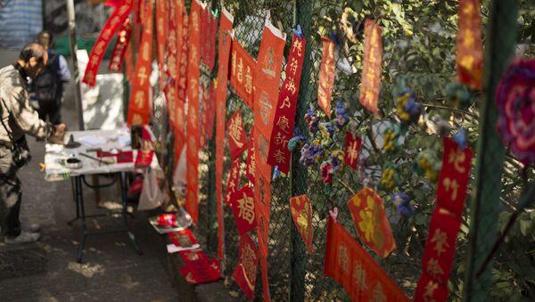 В преддверии китайского Нового года в Гонконге - Sputnik Латвия