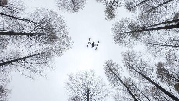 Итоги конкурса работ SkyPixel - Sputnik Латвия