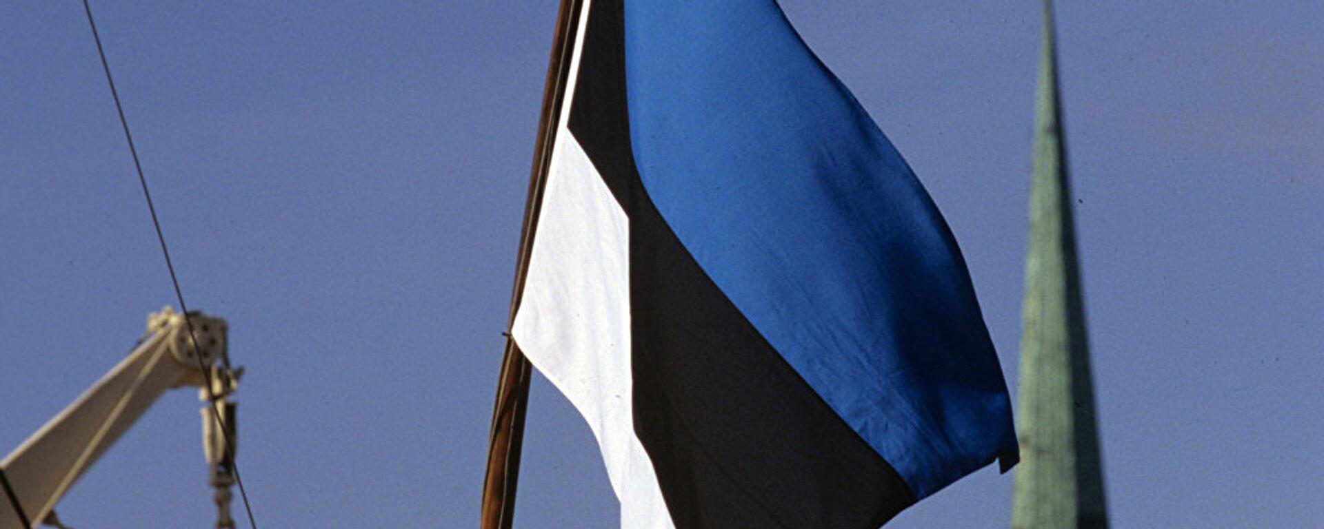 Igaunijas karogs - Sputnik Latvija, 1920, 03.09.2021