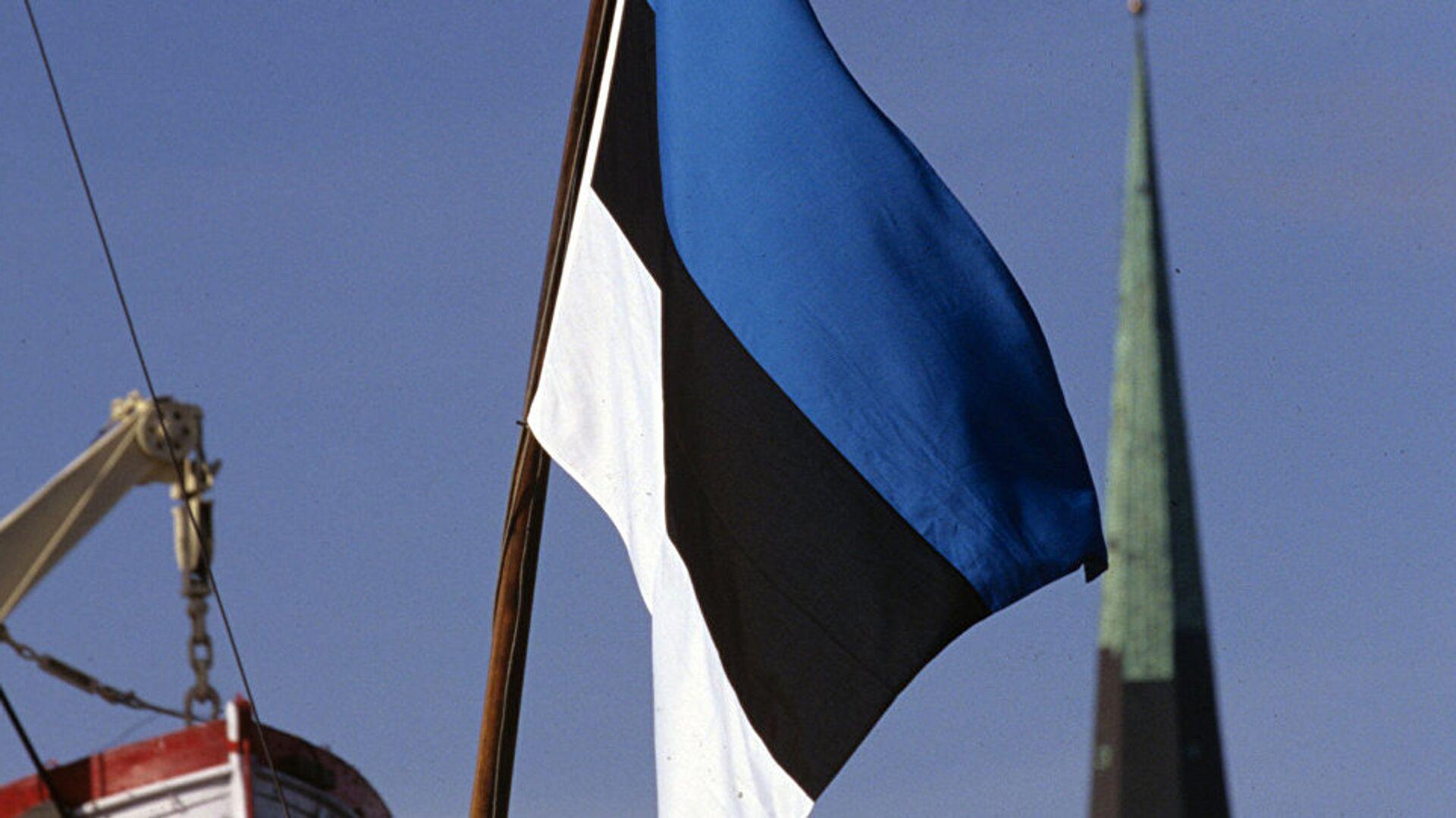 Государственный флаг Эстонии - Sputnik Латвия, 1920, 14.07.2021