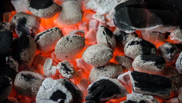 Ogles ugunskurā - Sputnik Latvija