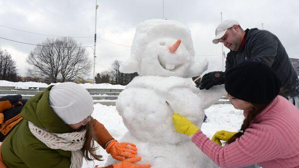 Арт-битва снеговиков - Sputnik Латвия