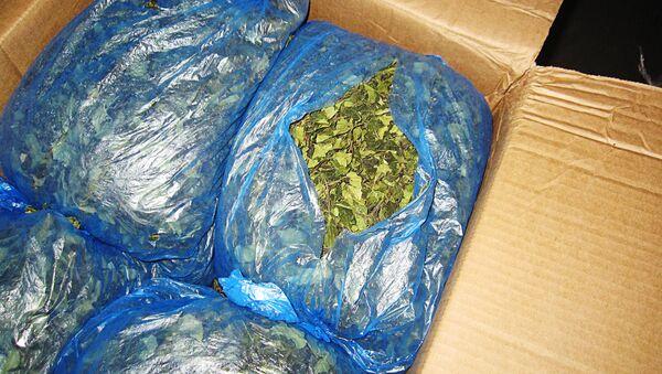 Наркотик кат из Кении, изъятый латвийской таможней - Sputnik Латвия